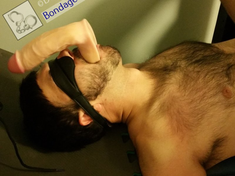 Bondage Sub Dildo Gagged